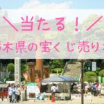 栃木県の当たる宝くじ売り場